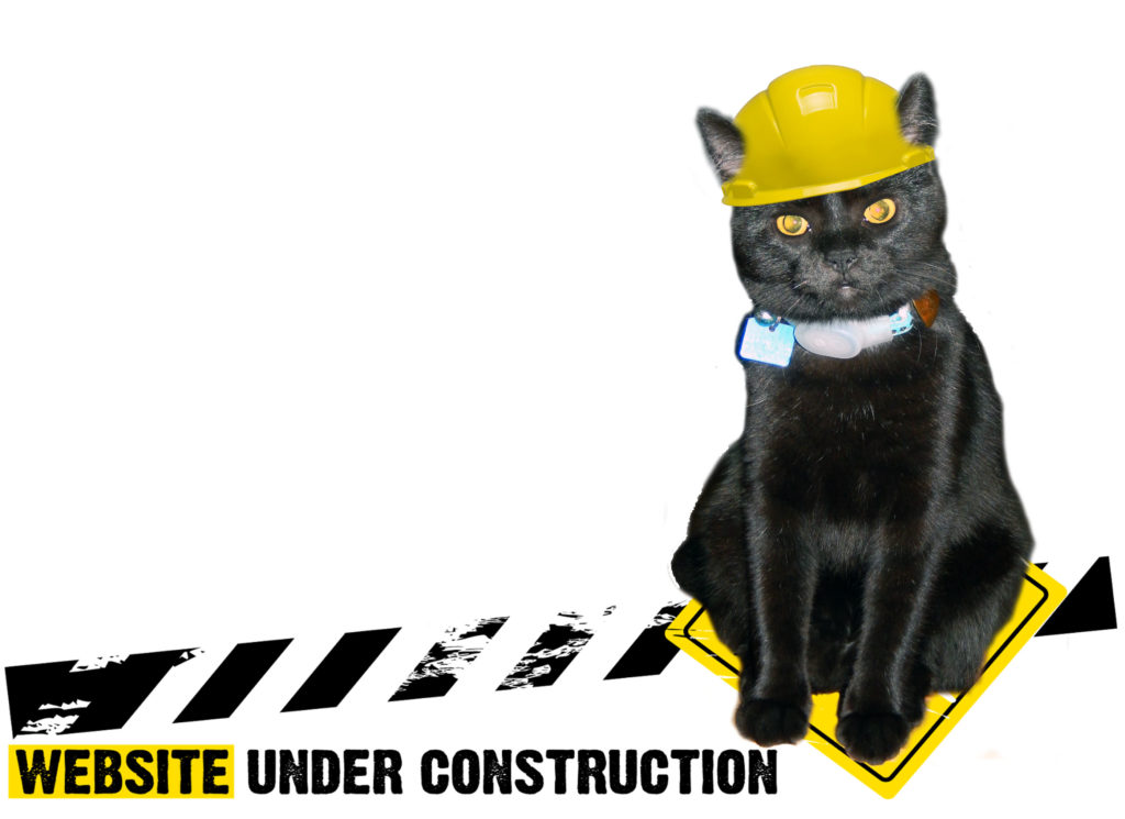 This image has an empty alt attribute; its file name is Webite-Under-Construction-1024x745.jpg